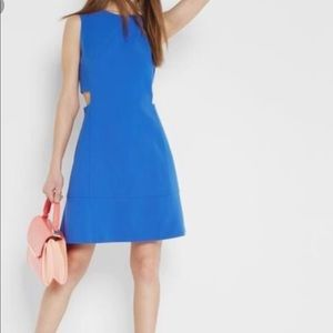 Ted Baker PANASHE A-Line shift dress